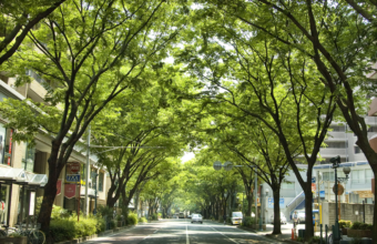 赤坂(福岡市中央区)の住み心地、新築・中古マンションの相場は?